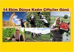Genel Başkan Çelik ten Dünya Kadın Çiftçiler Günü Mesajı