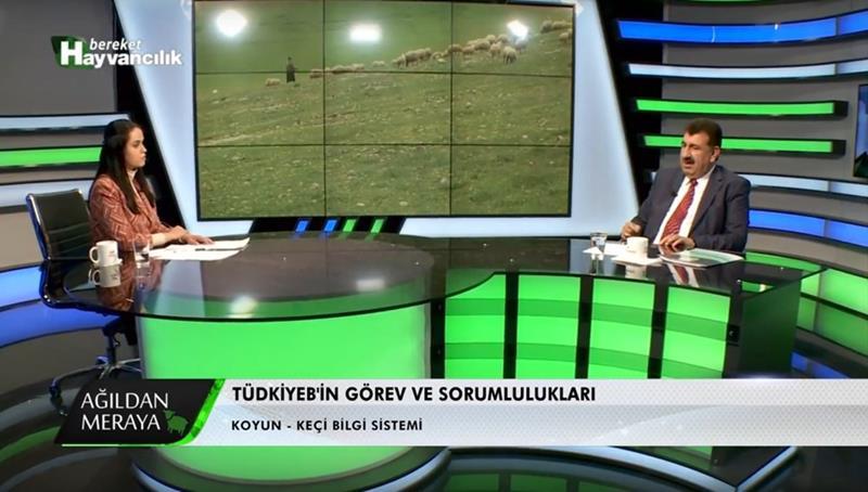 TÜDKİYEB Genel Başkanı Çelik , Bereket Hayvancılık Kanalına Konuk Oldu